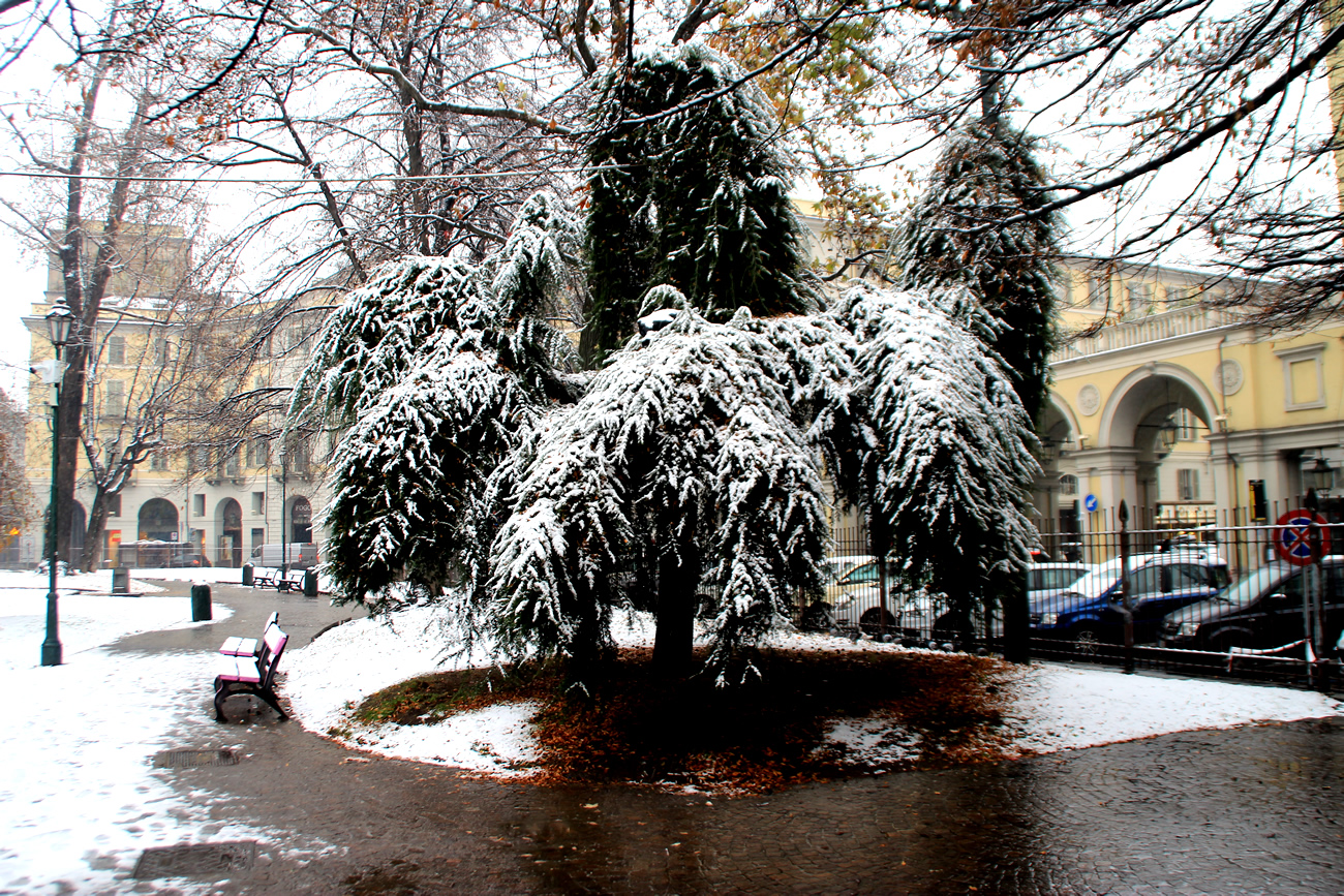 foto-neve-torino-piazza-carlo-felice-5