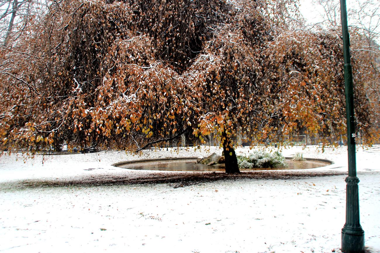 foto-neve-torino-piazza-carlo-felice-6