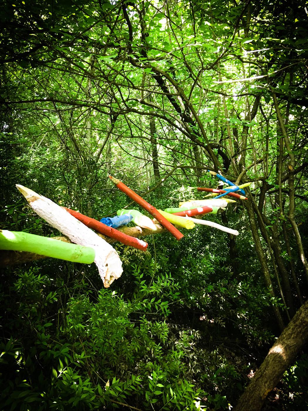 bosco delle meraviglie torino bnb 83 - 1