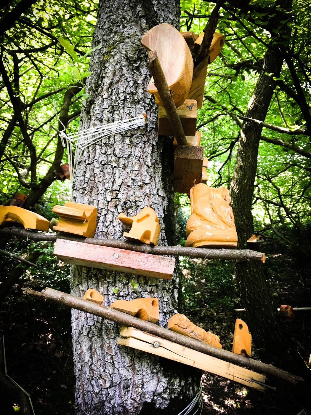 bosco delle meraviglie torino bnb 83 - 4