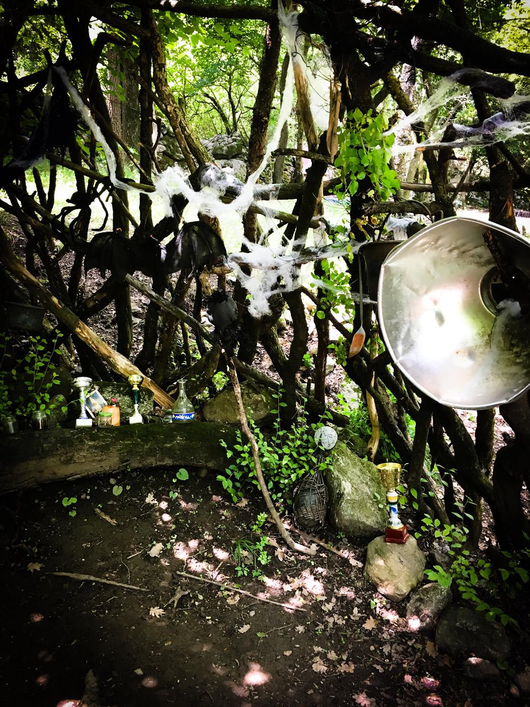 bosco delle meraviglie torino bnb 83 - 7
