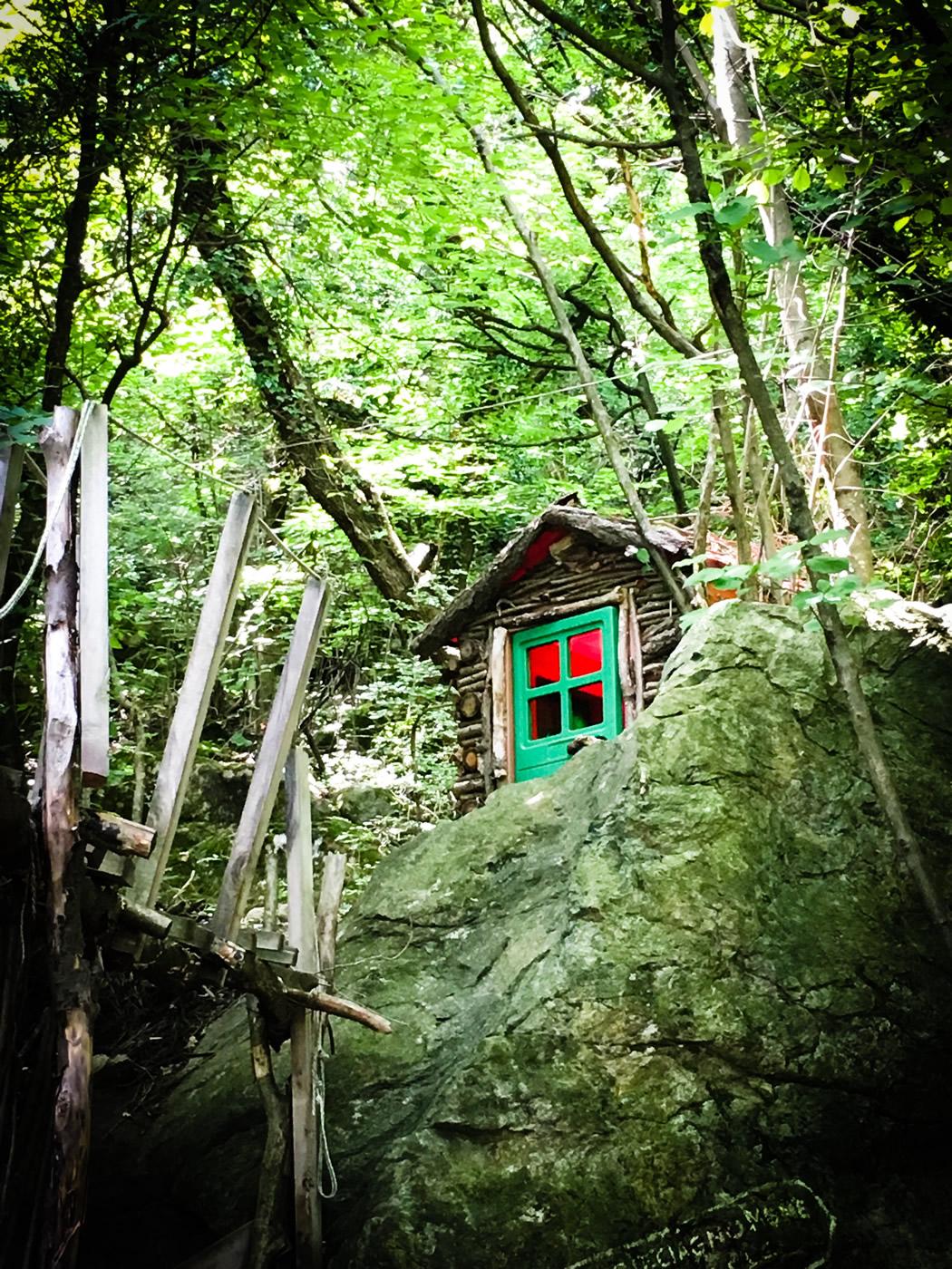 bosco delle meraviglie torino bnb 83 - 9